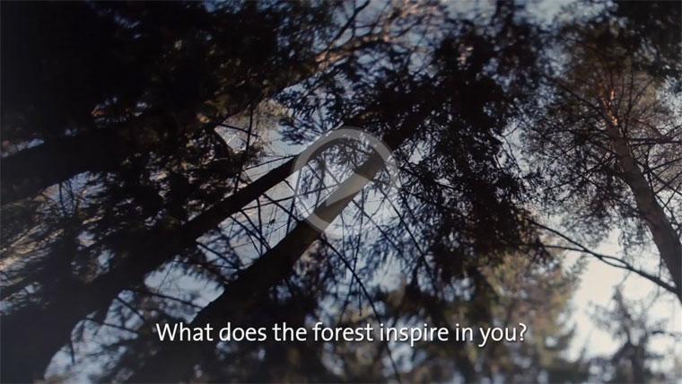 Wald Spots bei vimeo